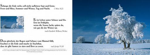 Birnbacher Karten: Winter II