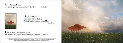 Birnbacher Karten: Hut im Wind