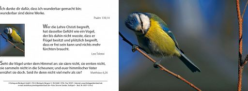 Bibelspruchkarte: Ich danke dir...