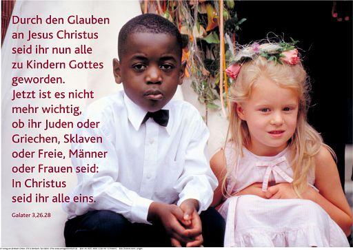 """Schaukastenposter 43 """"Hochzeit"""""""