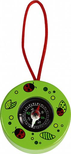 Kompass in Holzfassung, grün