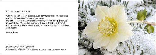 Leipziger Karte: Christrose