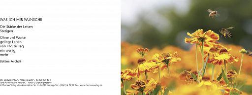 Leipziger Karte: Blütenpracht