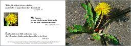 Birnbacher Karten: Taufkarte - Jesaja 43,19
