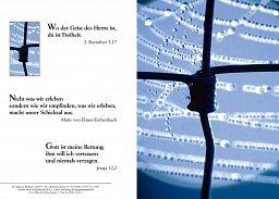 Birnbacher Karten: Draht-Kreuz