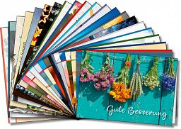 Sortiment über 61 Leipziger Spruchkarten
