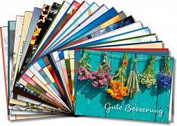 Sortiment über 57 Leipziger Spruchkarten