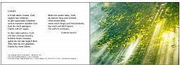 """Leipziger Bibelkarte """"Sonnenlicht"""""""