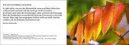 "Trauerkarte ""Herbstblatt"" ohne Innendruck"