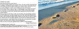 Leipziger Karte: Spuren im Sand