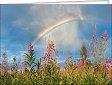 Leipziger Karte: Regenbogen